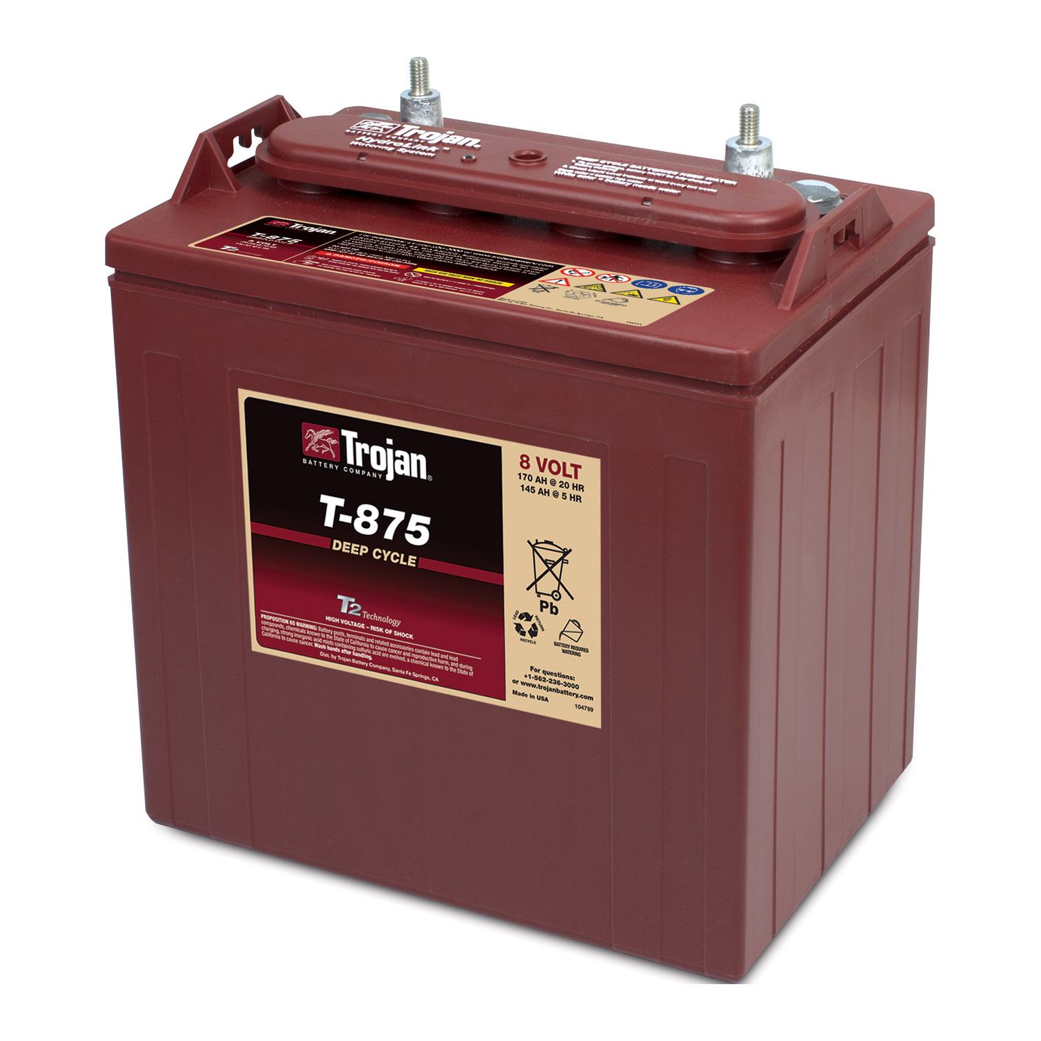 t875 trojan 8 volt deep cycle battery. Black Bedroom Furniture Sets. Home Design Ideas